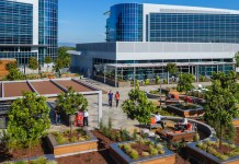 campus, Moffett Gateway, DES Architects + Engineers, Jay Paul Company, Moffett Place, Sunnyvale, Bay Area, Mountain View, Google, Newmark Cornish & Carey