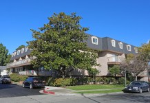 Fremont, Levin Johnston, Marcus & Millichap, Bay Area