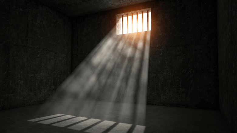 Indian Crypto Scammer Arrested to Dogecoin rapid increase