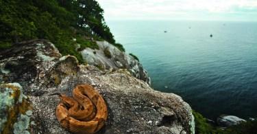 """جزيرة الأفاعي """"كويمادا غراندي"""" في البرازيل"""