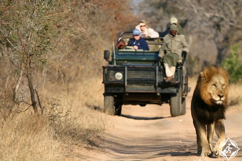 حديقة كروجر الوطنية ، جنوب إفريقيا