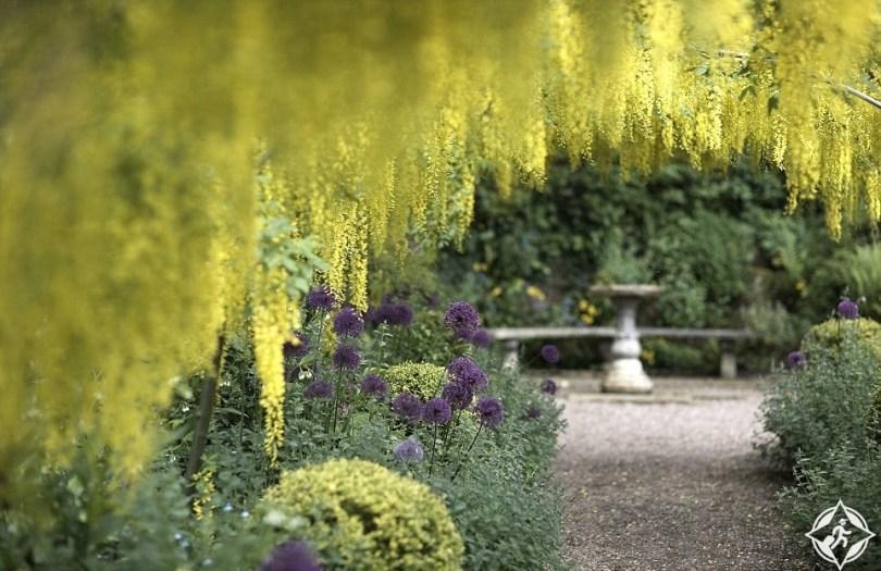 حديقة دوروثي كلايف
