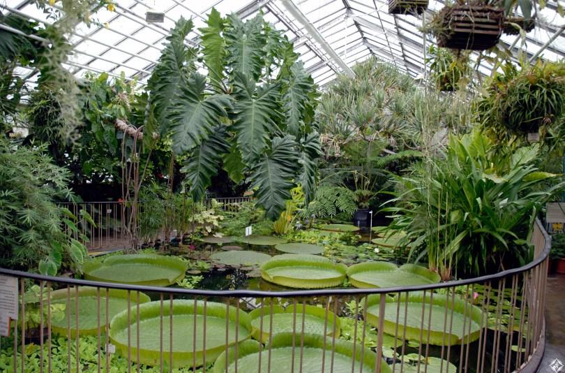 الاماكن السياحية في دوسلدورف حديقة دوسلدورف النباتية