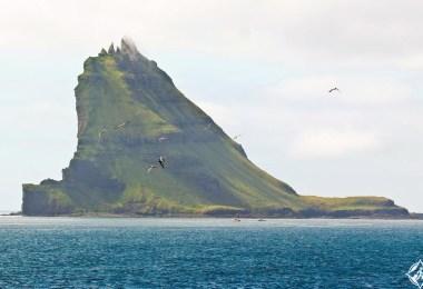 جزر فارو في الدنمارك