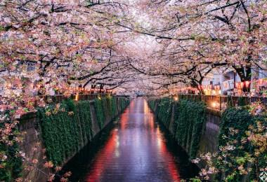 نهر-ميغورو-في-طوكيو