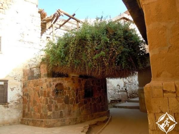 دير سانت كاترين-الشجرة المعلقة