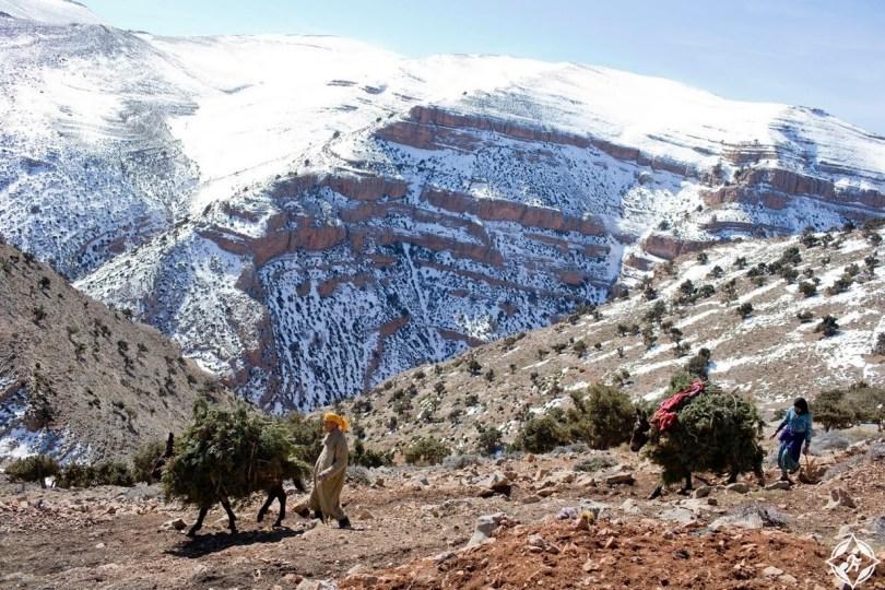 شهر العسل في مراكش