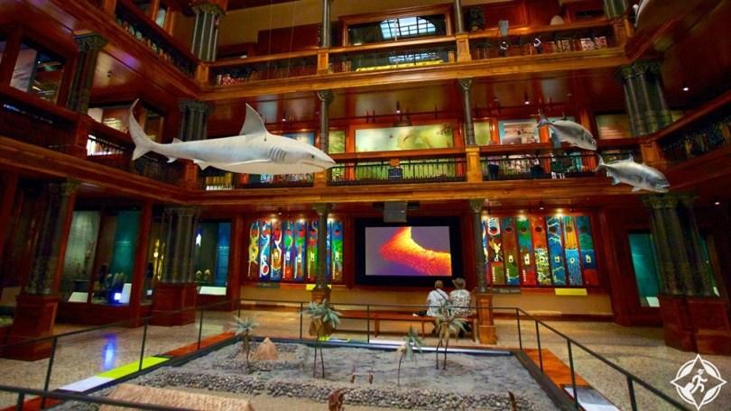 هونولولو - متحف بيشوب