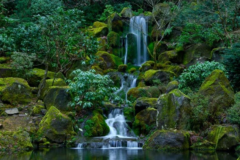 أوريغون - حديقة واشنطن