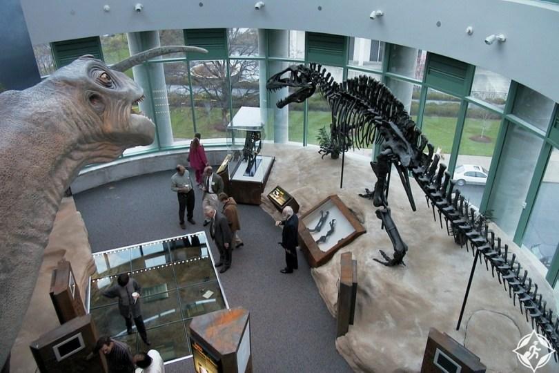 كارولاينا الشمالية - متحف نورث كارولاينا للعلوم الطبيعية