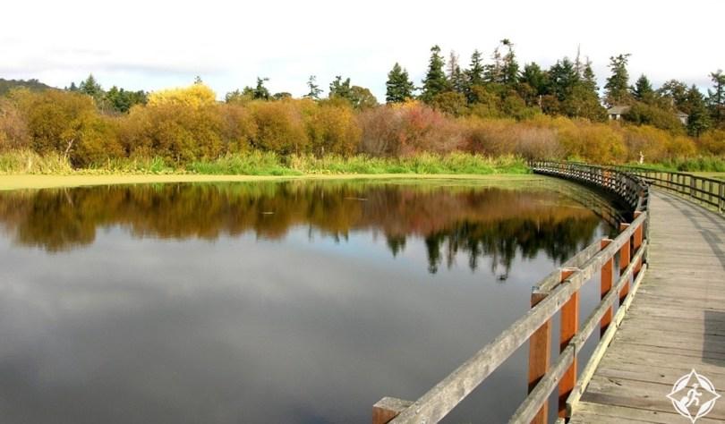 سانيتش - محمية بحيرة سوان كريسماس هيل الطبيعة
