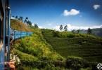 رحلتي إلى سريلانكا