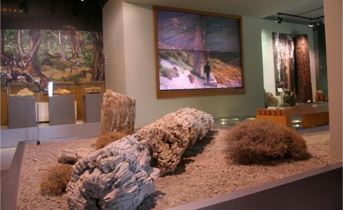 Νεο Καλοκαιρινό Ωράριο Λειτουργίας του Μουσείου Φυσικής Ιστορίας ...