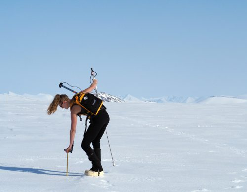 Photo by Julian Dann. International Arctic Research Center science communicator Heather McFarland joined the NGEE Arctic field crew this year. Here she uses a Magnaprobe to record the GPS location and snow depth.