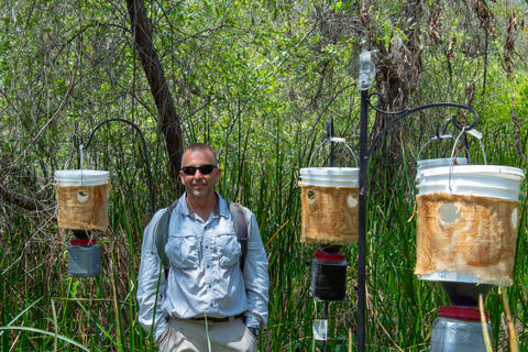 Mark Hoddle, UCR entomologist