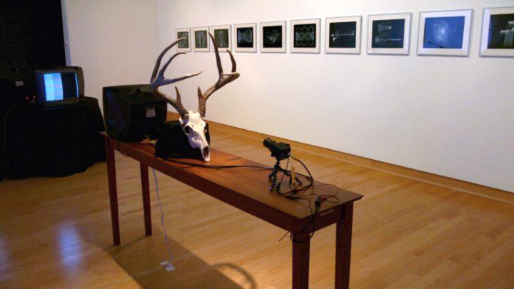 Timothy Nohe Kohl Gallery