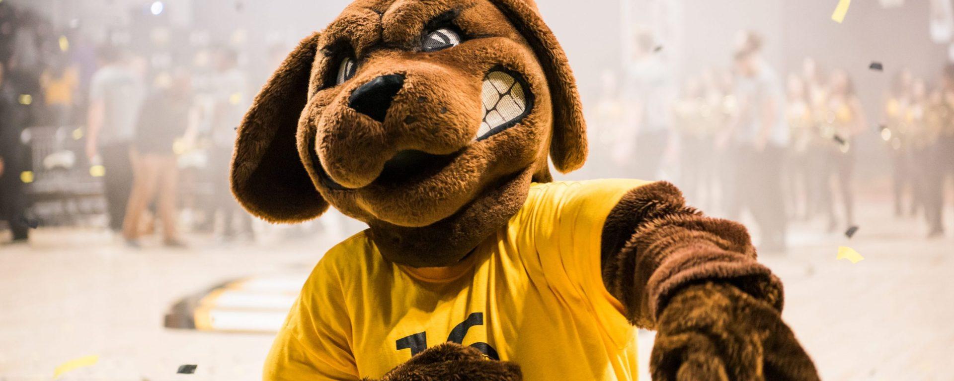 True Grit celebrates NCAA tournament win against UVA.