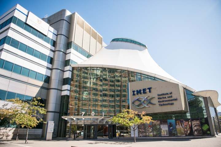A view of a building with a tall glass entrance. The building has the letters IMET written in navy blue with an outlines of two purple and green fish underneath.