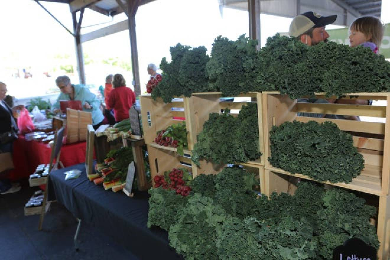 Saturday, May 1, 2021 was opening day for the Robertson County Farmers Market, located at Springfield Fairgrounds.