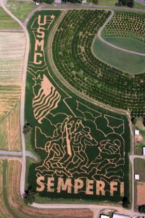 Alstede Farms corn maze, Chester, New Jersey