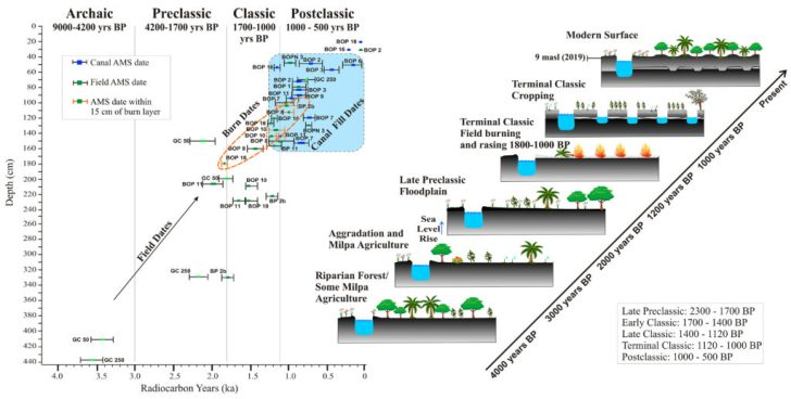Ancient Maya Canals and Fields Show Early and Extensive Impacts on Tropical Forests