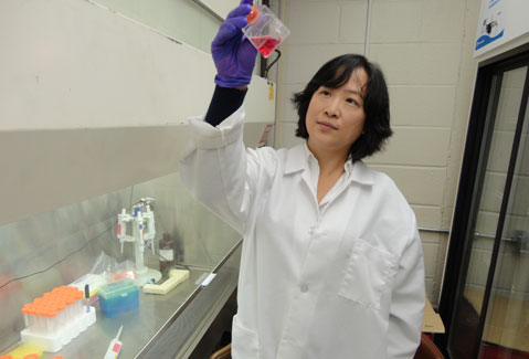 Francesca-Fang Liao, PhD, and her research team hope to gain further insight into the cause of the Alzheimer's disease.