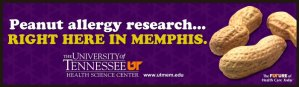 Peanut allergy research... Right Here In Memphis