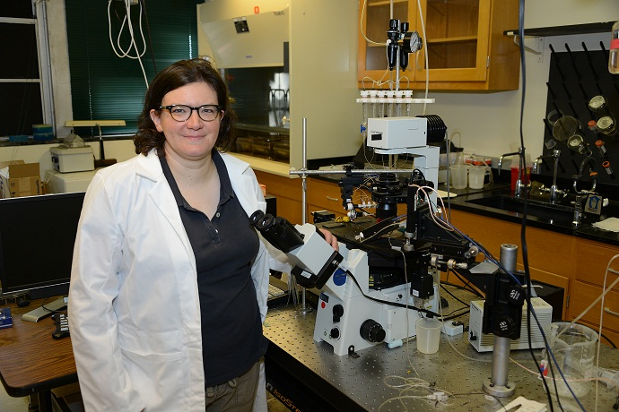 A $1.6 million grant from the NIH will enable Dr. Kristen O'Connell and her research team to identify the changes that high-calorie diets have on the neural circuits that control appetite and food intake.