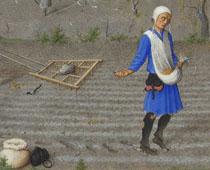 """Detail from """"Les Très Riches Heures du duc de Berry octubre"""""""