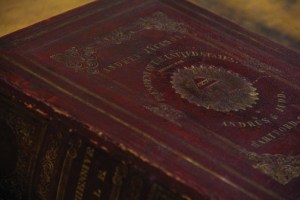 Jackson Bible cover