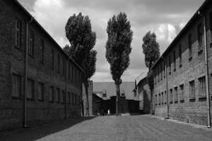 Auschwitz-14