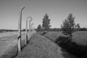Auschwitz-6