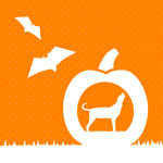 halloween-icon150x150 v0.2