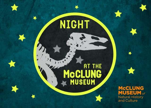 Night At McClung
