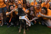 Smokey X greets his adoring fans. Part of the festivities as UT set the record for the Largest Human Letter live on the Today Show, March 29, 2017. Photo by Daryl Johnson UT Creative Communications.