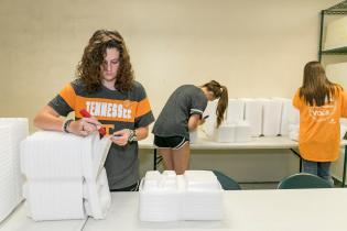 Saturday, June 20, 2018 is Volunteering with the Vols Day, and University of Tennessee Volunteers from across the globe join together to service in their community. Here, members of the Big Orange family in Knoxville help sort and package hundreds of meals at The Love Kitchen on Martin Luther King Jr. Boulevard....Photo by Erik Campos