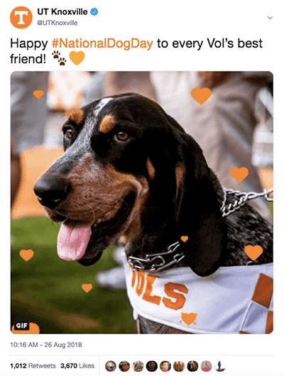 National Dog Day Tweet