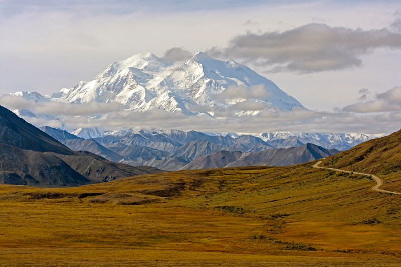 Mount Denali above the fall Tundra in Alaska's Denali National Park