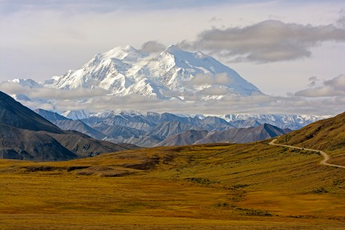 Mount Denali above the fall Tundra in Alaska's Denali National Park
