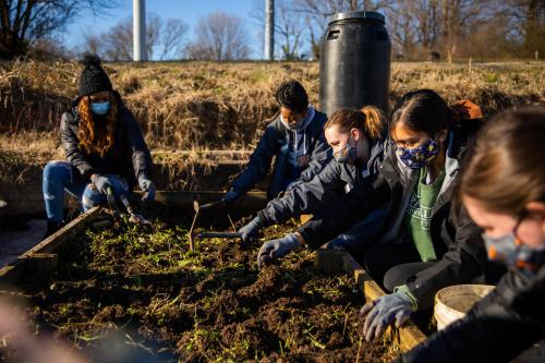 Students volunteer to work at Knoxville Botanical Garden and Arboretum through the Jones Center for Leadership and Service during the annual MLK Jr. Days of Service