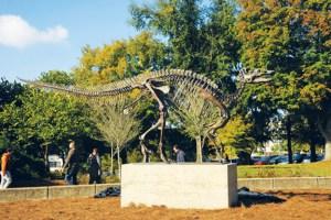 McClung_Edmontosaurus