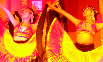 Chinese Dance Show
