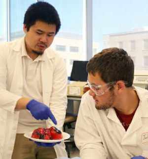 Photo: John examining a human heart