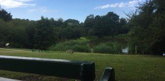 Acton Park View Scenery Bench