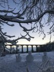 aqueduct snow January Johanna Cook