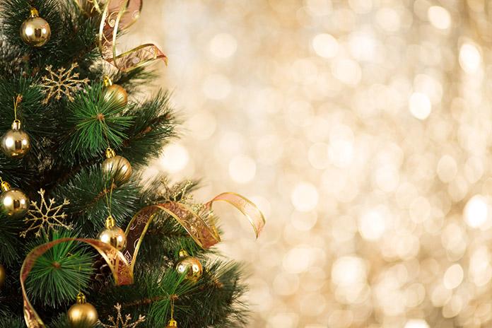 Bis Wann Bleibt Der Weihnachtsbaum Stehen.So Bleibt Ihr Christbaum Lange Frisch