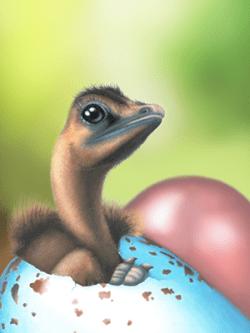 modern birds' eggs