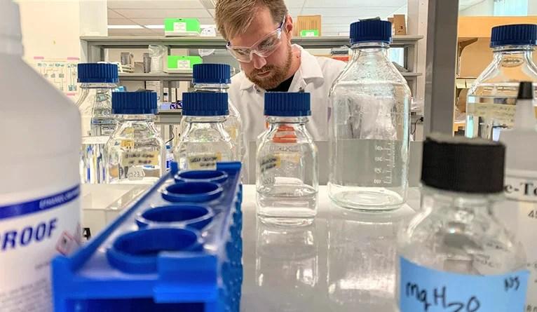 REVU participant Haris Gargovic works in the lab of Yale geneticist Bluma Lesch.