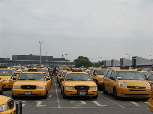 taxi_polla