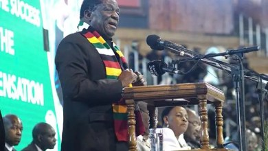 Photo of President Emmerson Mnangagwa announces date of Zim elections